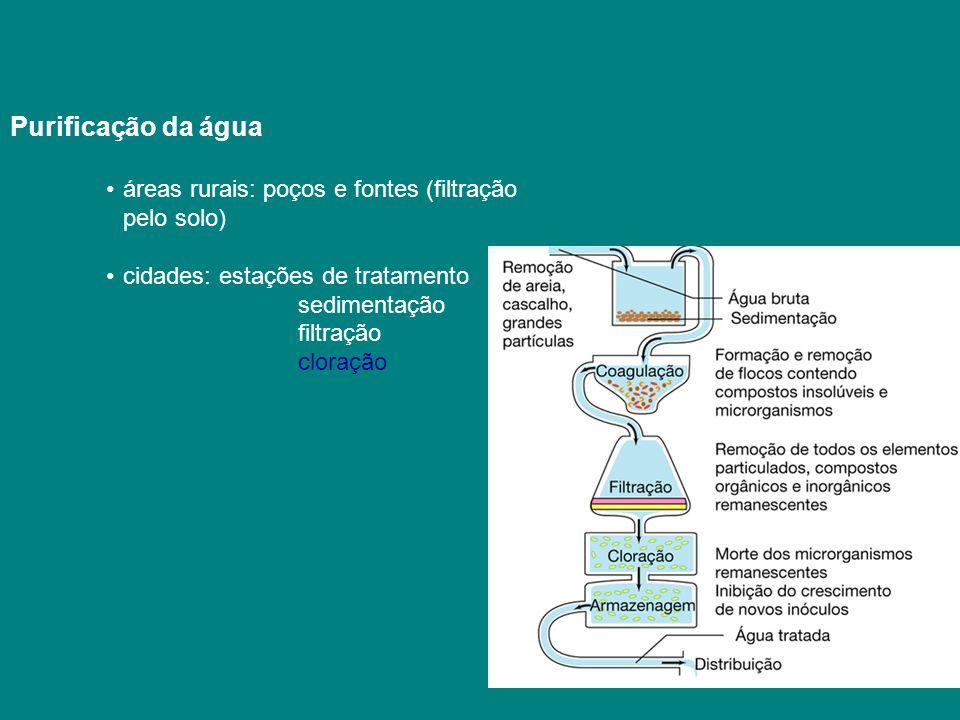 Purificação da água áreas rurais: poços e fontes (filtração pelo solo) cidades: estações de tratamento sedimentação filtração cloração