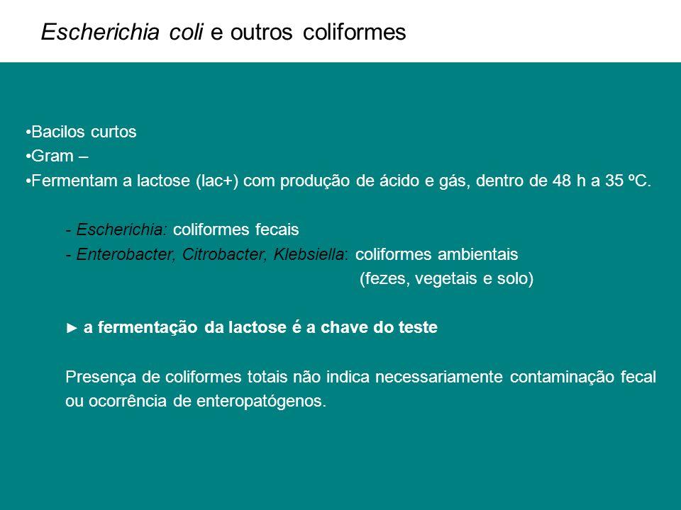 Escherichia coli e outros coliformes Bacilos curtos Gram – Fermentam a lactose (lac+) com produção de ácido e gás, dentro de 48 h a 35 ºC. - Escherich