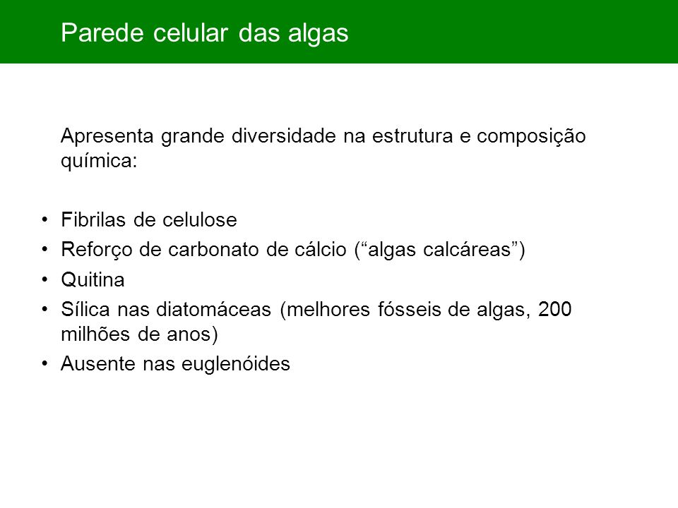 Parede celular das algas Apresenta grande diversidade na estrutura e composição química: Fibrilas de celulose Reforço de carbonato de cálcio (algas ca