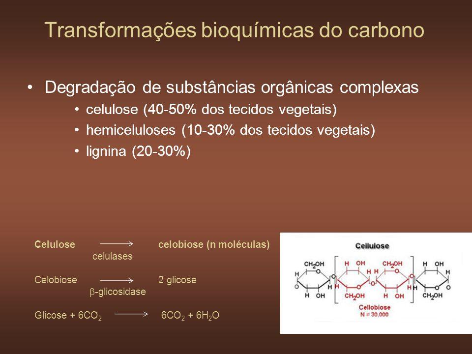 Transformações bioquímicas do carbono Degradação de substâncias orgânicas complexas celulose (40-50% dos tecidos vegetais) hemiceluloses (10-30% dos t