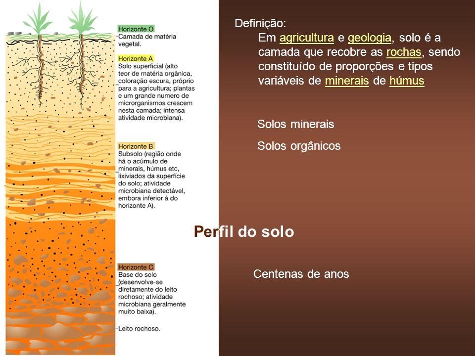 O solo como hábitat microbiano Principais fatores que afetam a atividade: - Umidade - Status nutricional