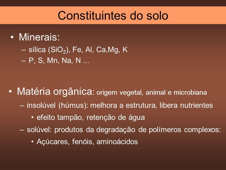 Minerais: –sílica (SiO 2 ), Fe, Al, Ca,Mg, K –P, S, Mn, Na, N... Matéria orgânica : origem vegetal, animal e microbiana –insolúvel (húmus): melhora a