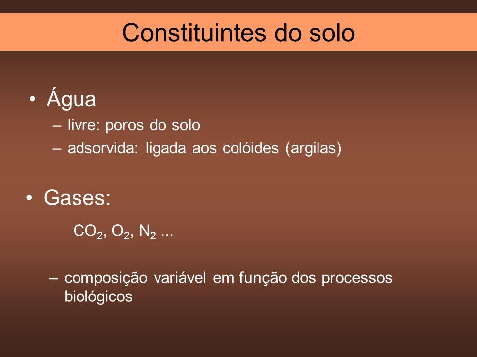 Água –livre: poros do solo –adsorvida: ligada aos colóides (argilas) Gases: CO 2, O 2, N 2... –composição variável em função dos processos biológicos