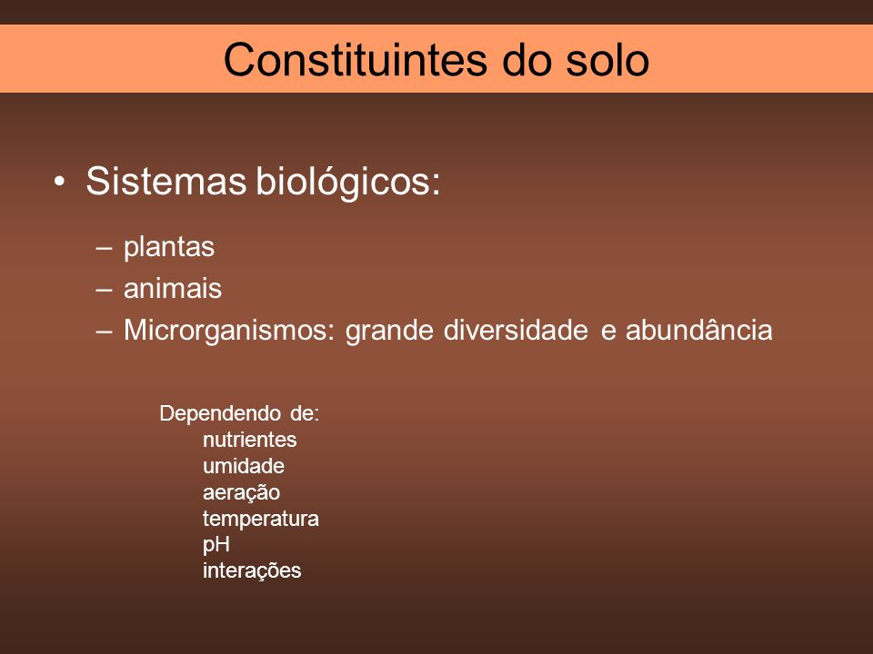 Sistemas biológicos: –plantas –animais –Microrganismos: grande diversidade e abundância Dependendo de: nutrientes umidade aeração temperatura pH inter