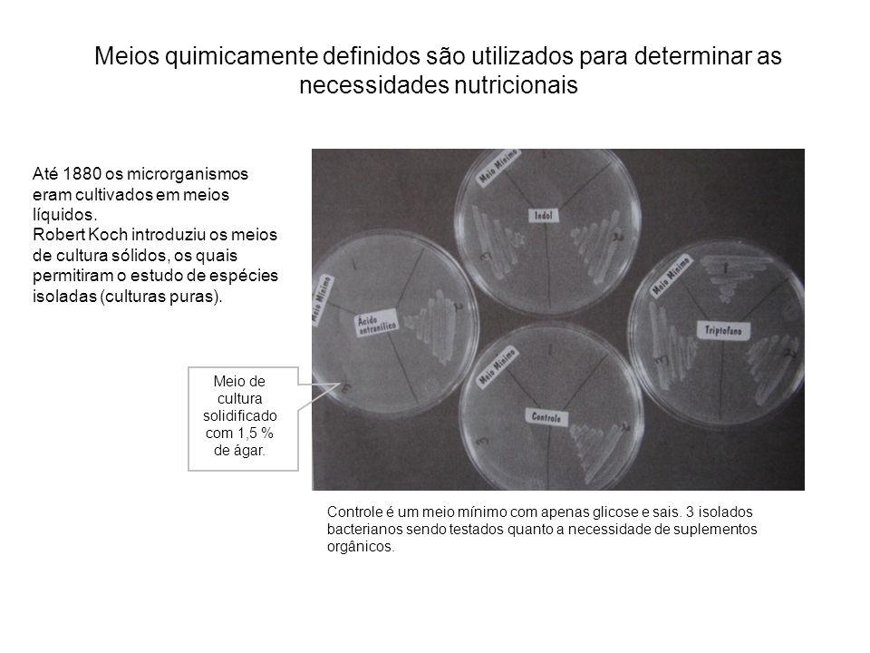 Meios quimicamente definidos são utilizados para determinar as necessidades nutricionais Controle é um meio mínimo com apenas glicose e sais. 3 isolad