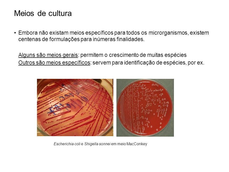 Meios de cultura Embora não existam meios específicos para todos os microrganismos, existem centenas de formulações para inúmeras finalidades. Alguns