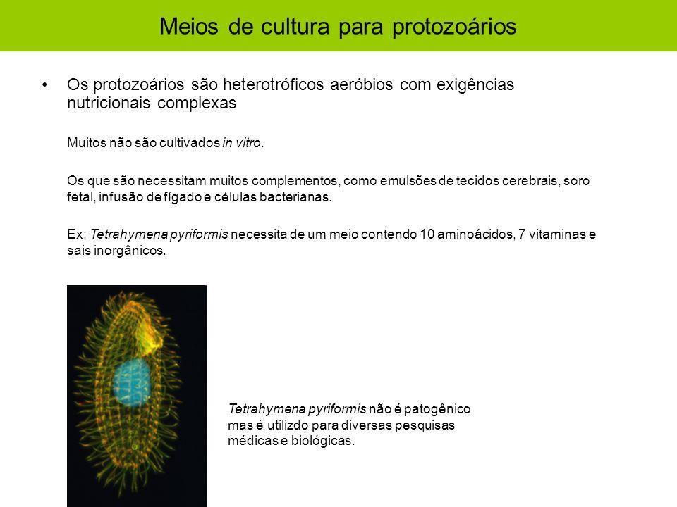 Meios de cultura para protozoários Os protozoários são heterotróficos aeróbios com exigências nutricionais complexas Muitos não são cultivados in vitr