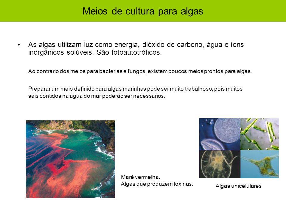 Meios de cultura para algas As algas utilizam luz como energia, dióxido de carbono, água e íons inorgânicos solúveis. São fotoautotróficos. Ao contrár