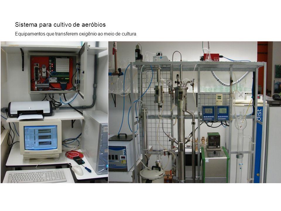 Sistema para cultivo de aeróbios Equipamentos que transferem oxigênio ao meio de cultura
