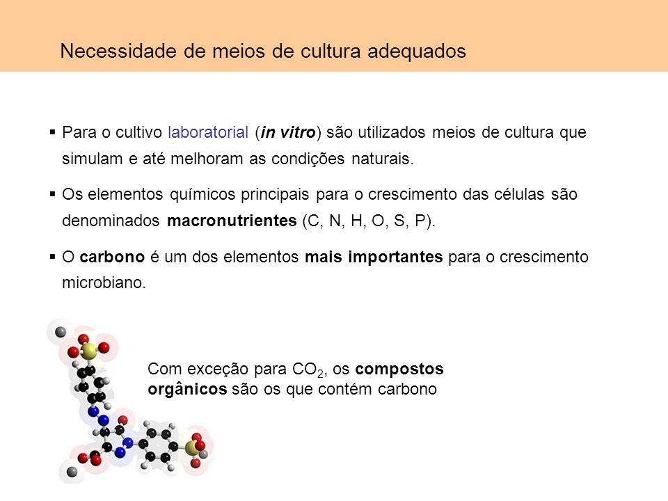 Para o cultivo laboratorial (in vitro) são utilizados meios de cultura que simulam e até melhoram as condições naturais. Os elementos químicos princip