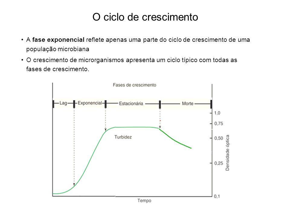 O ciclo de crescimento A fase exponencial reflete apenas uma parte do ciclo de crescimento de uma população microbiana O crescimento de microrganismos