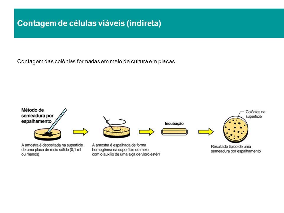 Contagem de células viáveis (indireta) Contagem das colônias formadas em meio de cultura em placas.