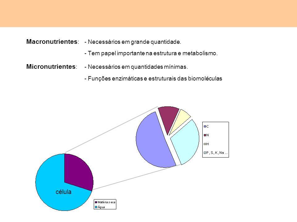 Macronutrientes : - Necessários em grande quantidade. - Tem papel importante na estrutura e metabolismo. Micronutrientes : - Necessários em quantidade