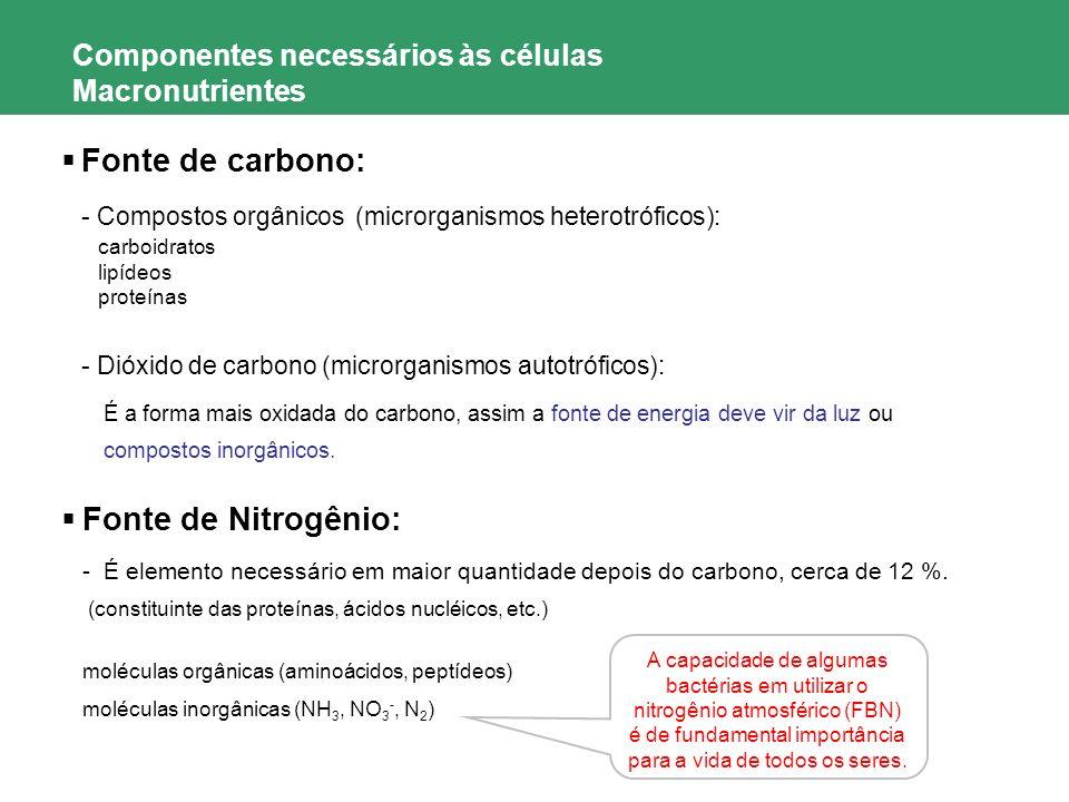 Componentes necessários às células Macronutrientes Fonte de carbono: - Compostos orgânicos (microrganismos heterotróficos): carboidratos lipídeos prot