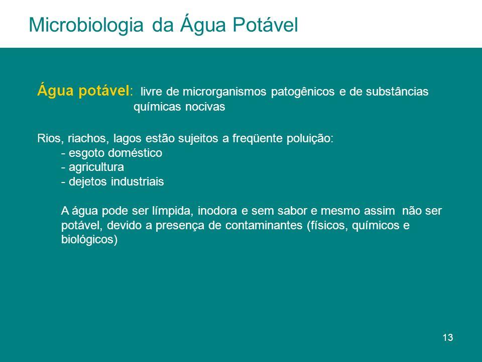 Água potável: livre de microrganismos patogênicos e de substâncias químicas nocivas Rios, riachos, lagos estão sujeitos a freqüente poluição: - esgoto