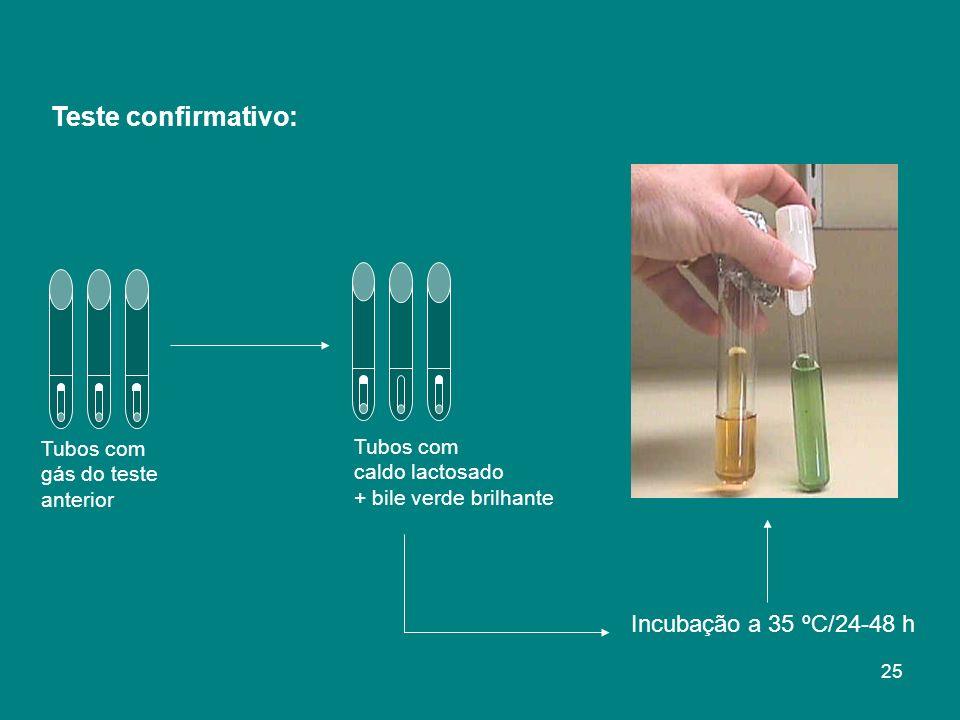 Tubos com gás do teste anterior Tubos com caldo lactosado + bile verde brilhante Incubação a 35 ºC/24-48 h Teste confirmativo: 25