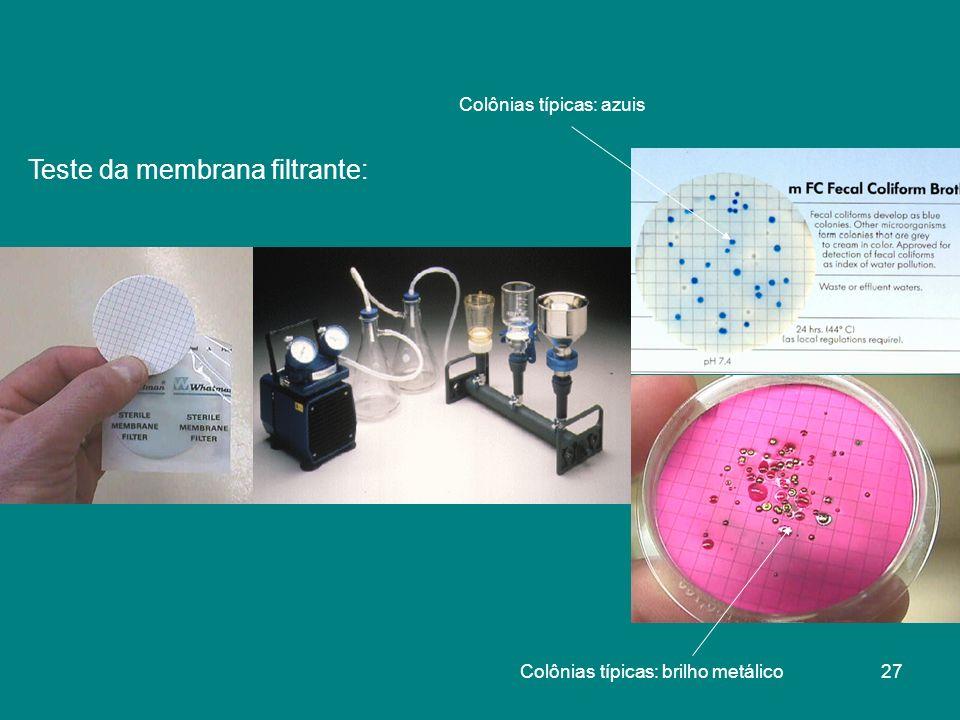 Teste da membrana filtrante: Colônias típicas: brilho metálico Colônias típicas: azuis 27