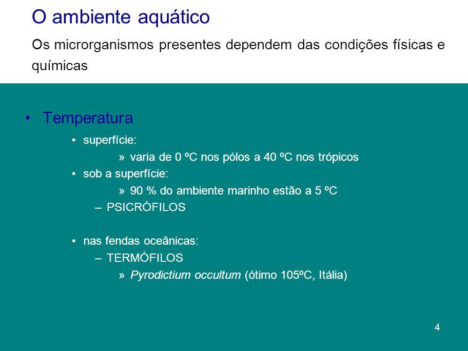Temperatura superfície: »varia de 0 ºC nos pólos a 40 ºC nos trópicos sob a superfície: »90 % do ambiente marinho estão a 5 ºC –PSICRÓFILOS nas fendas oceânicas: –TERMÓFILOS »Pyrodictium occultum (ótimo 105ºC, Itália) O ambiente aquático Os microrganismos presentes dependem das condições físicas e químicas 4