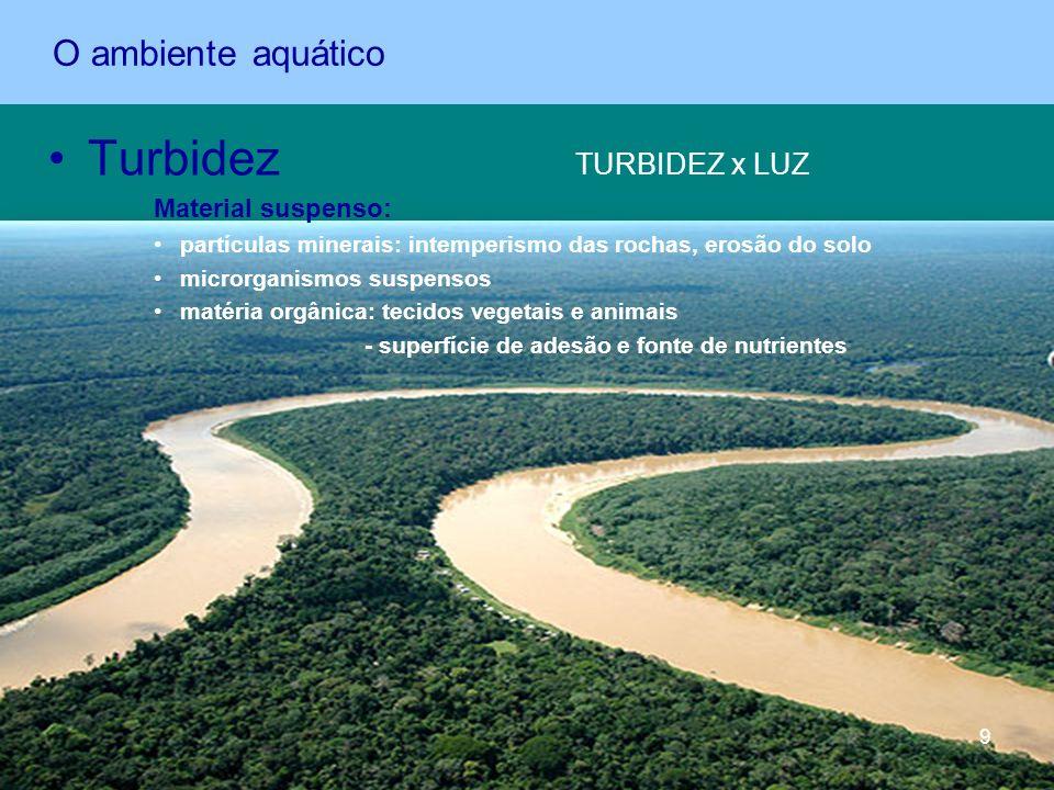 Turbidez TURBIDEZ x LUZ Material suspenso: partículas minerais: intemperismo das rochas, erosão do solo microrganismos suspensos matéria orgânica: tec