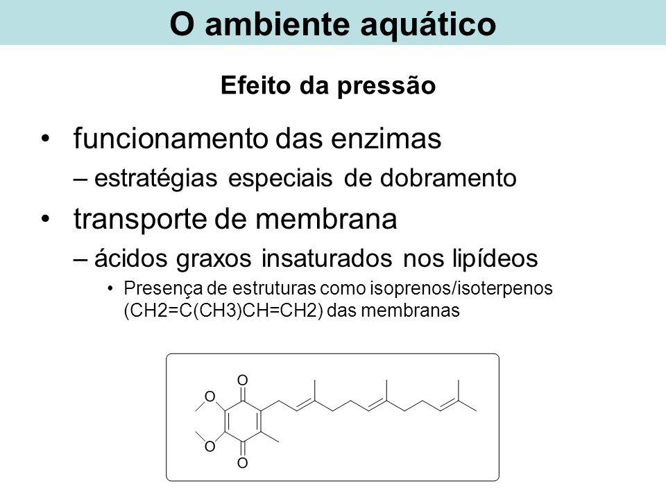 Efeito da pressão funcionamento das enzimas –estratégias especiais de dobramento transporte de membrana –ácidos graxos insaturados nos lipídeos Presen
