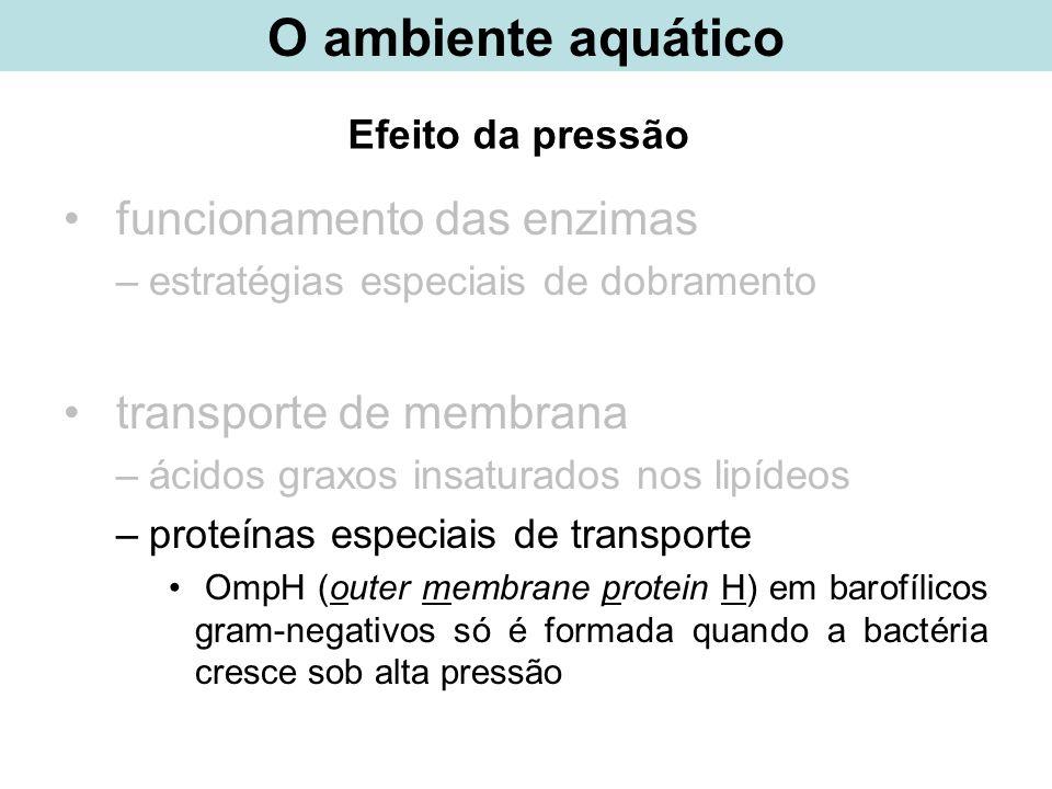 Efeito da pressão funcionamento das enzimas –estratégias especiais de dobramento transporte de membrana –ácidos graxos insaturados nos lipídeos –prote