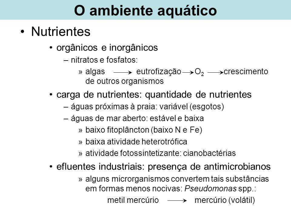 Nutrientes orgânicos e inorgânicos –nitratos e fosfatos: »algas eutrofização O 2 crescimento de outros organismos carga de nutrientes: quantidade de n