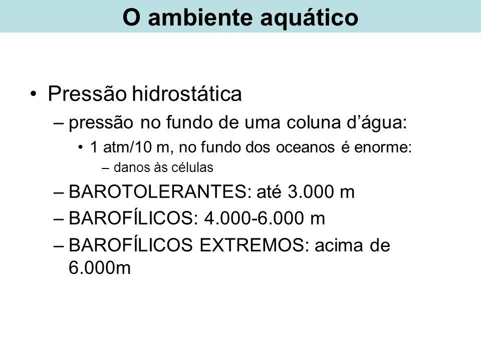 Pressão hidrostática –pressão no fundo de uma coluna dágua: 1 atm/10 m, no fundo dos oceanos é enorme: –danos às células –BAROTOLERANTES: até 3.000 m
