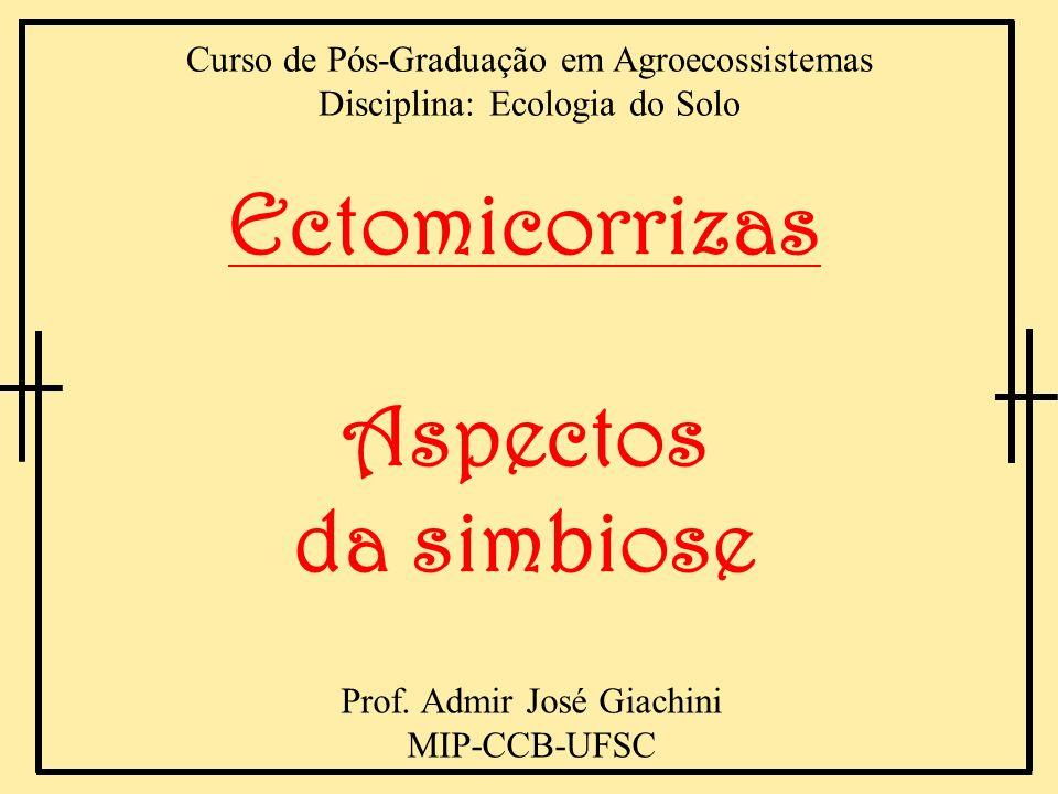Roteiro 1.Introdução 2.A simbiose micorrízica 3.Tipos de micorrizas 4.Aspectos evolutivos 5.Tipos de fungos ectomicorrízicos 6.Tipos de simbiontes vegetais 7.Efeito das micorrizas e inoculação 8.Considerações Finais