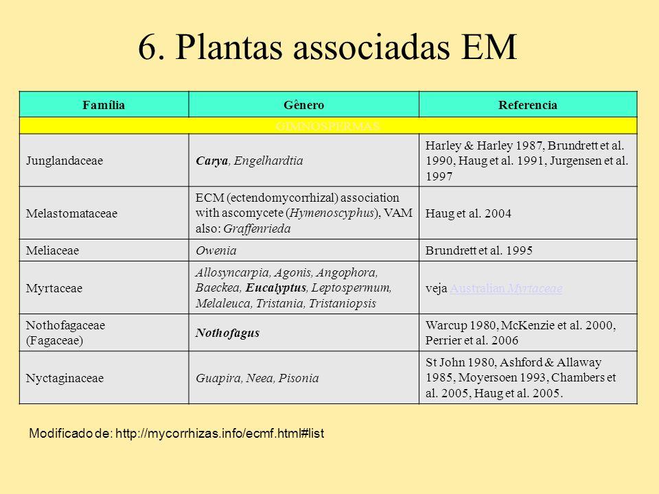 6. Plantas associadas EM FamíliaGêneroReferencia GIMNOSPERMAS JunglandaceaeCarya, Engelhardtia Harley & Harley 1987, Brundrett et al. 1990, Haug et al