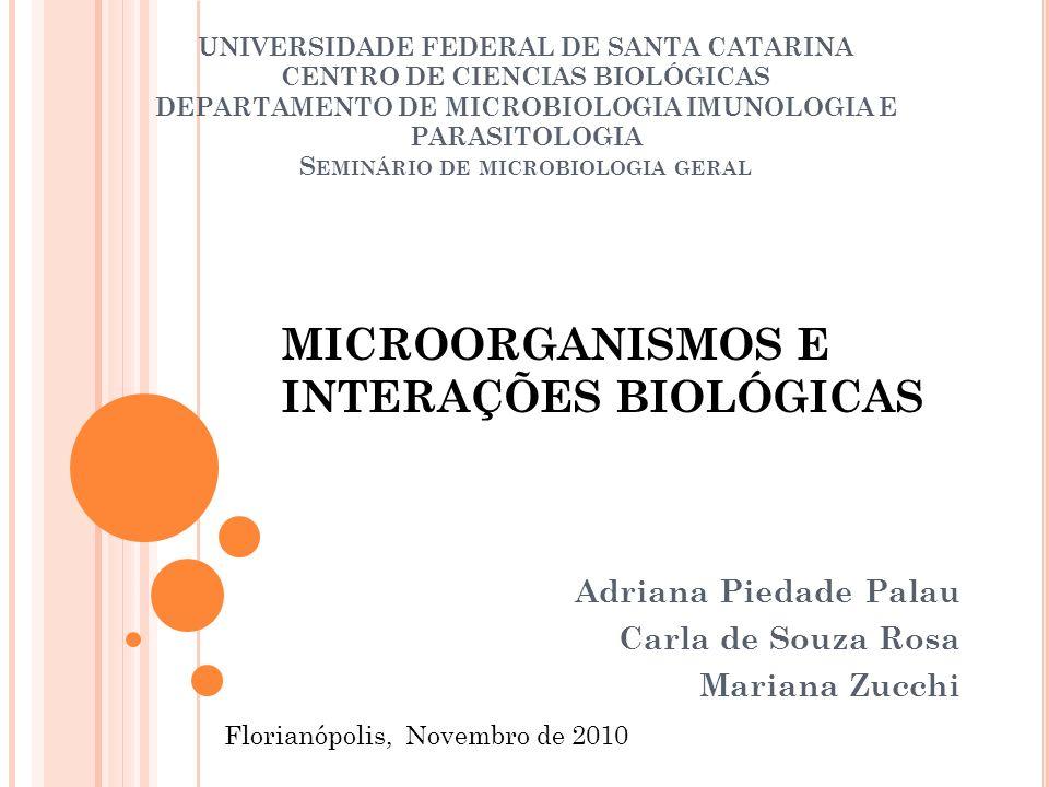 UNIVERSIDADE FEDERAL DE SANTA CATARINA CENTRO DE CIENCIAS BIOLÓGICAS DEPARTAMENTO DE MICROBIOLOGIA IMUNOLOGIA E PARASITOLOGIA S EMINÁRIO DE MICROBIOLO