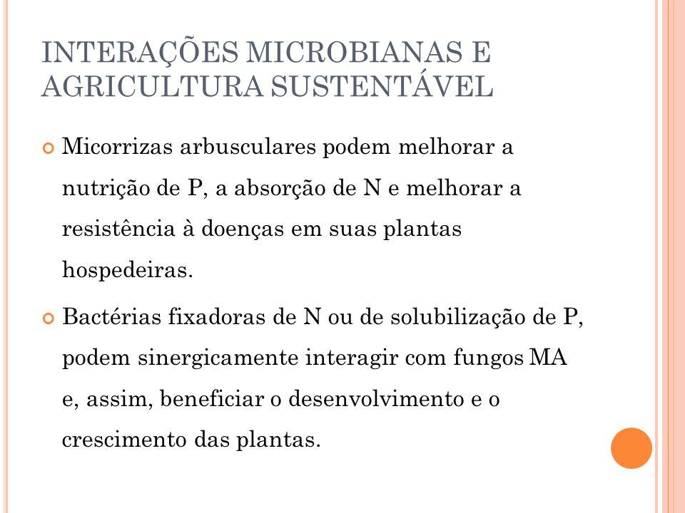 INTERAÇÕES MICROBIANAS E AGRICULTURA SUSTENTÁVEL Micorrizas arbusculares podem melhorar a nutrição de P, a absorção de N e melhorar a resistência à do