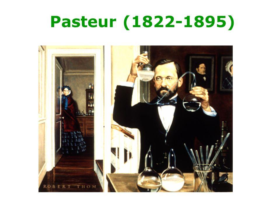 Pasteur (1822-1895)
