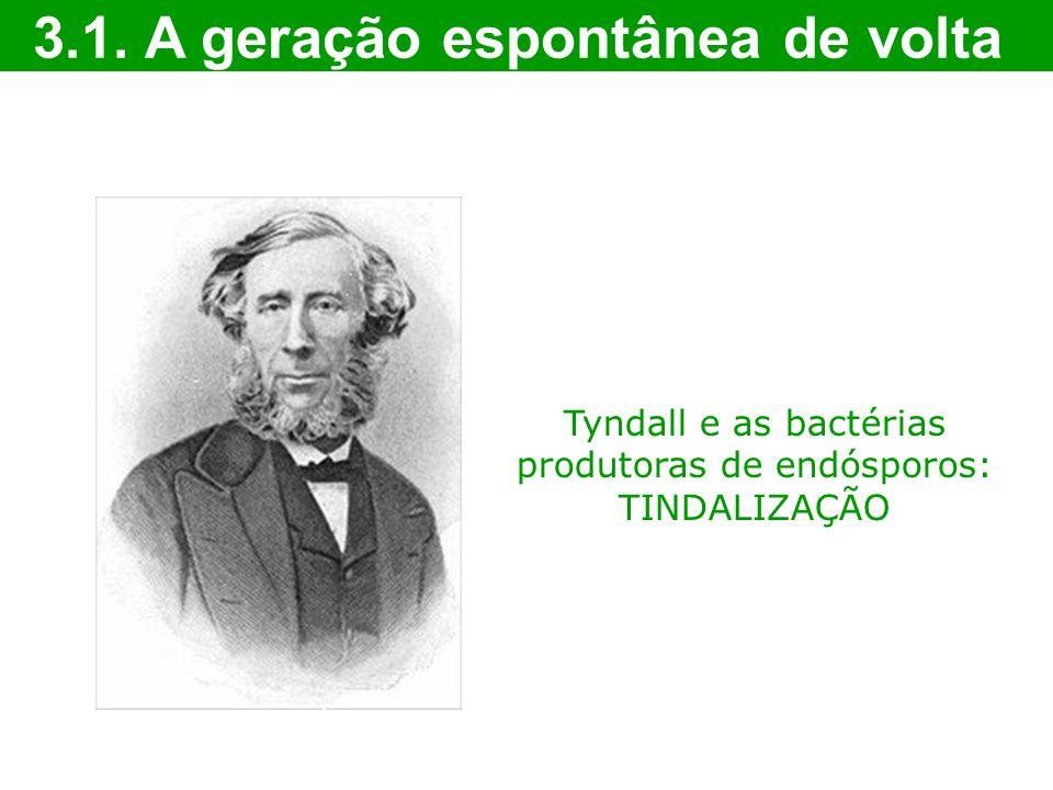 Tyndall e as bactérias produtoras de endósporos: TINDALIZAÇÃO 3.1. A geração espontânea de volta