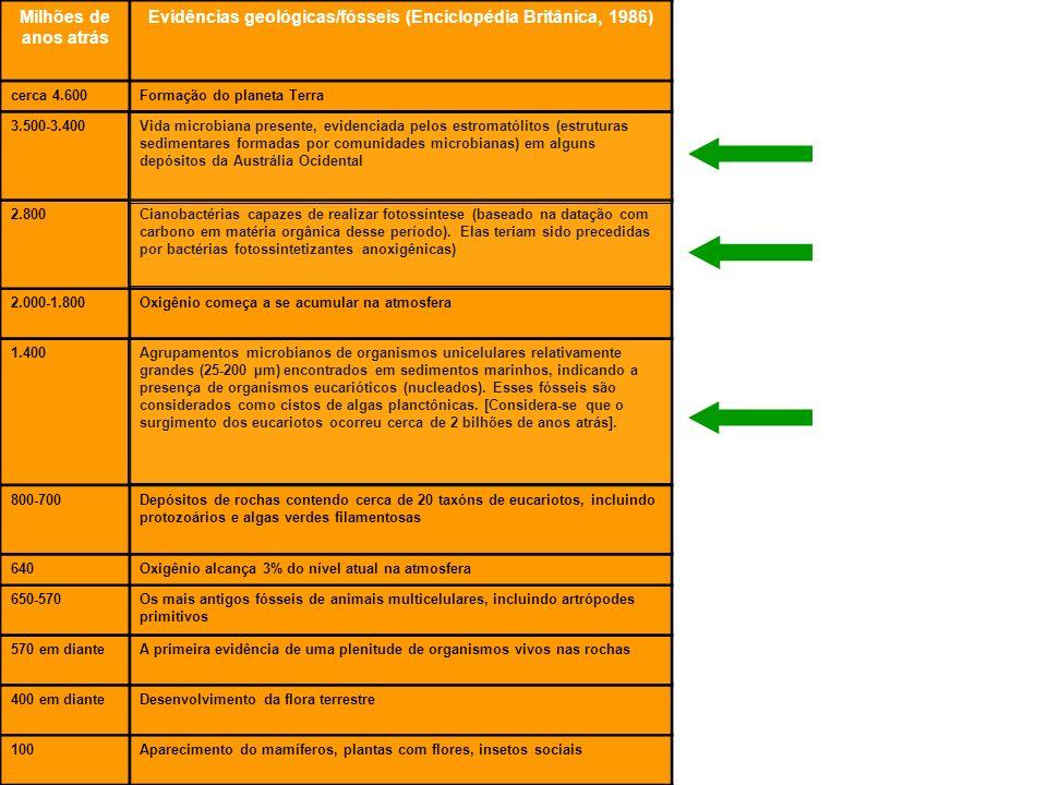 Fracastoro (1546): –seres pequenos causadores de doenças Plenciz (séc.