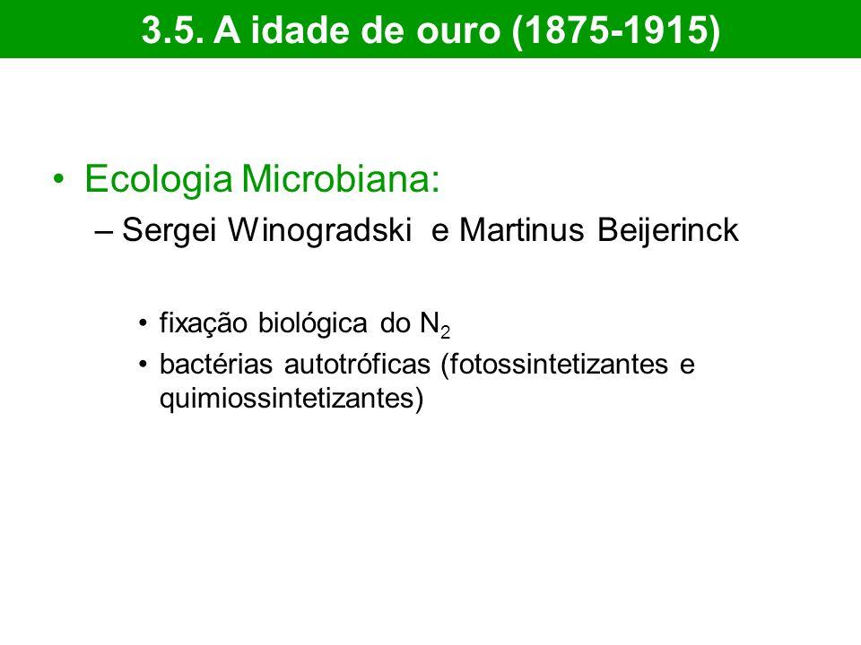 Ecologia Microbiana: –Sergei Winogradski e Martinus Beijerinck fixação biológica do N 2 bactérias autotróficas (fotossintetizantes e quimiossintetizantes) 3.5.