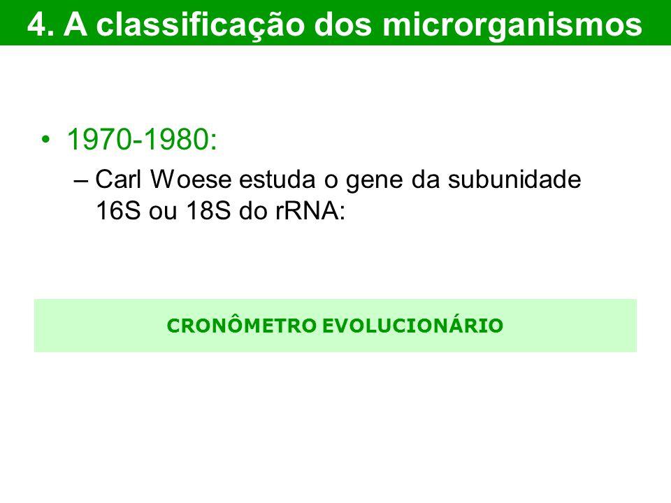 CRONÔMETRO EVOLUCIONÁRIO 1970-1980: –Carl Woese estuda o gene da subunidade 16S ou 18S do rRNA: 4. A classificação dos microrganismos