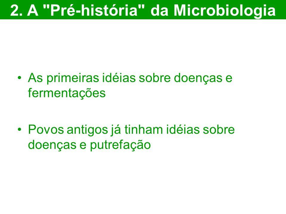As primeiras idéias sobre doenças e fermentações Povos antigos já tinham idéias sobre doenças e putrefação 2.