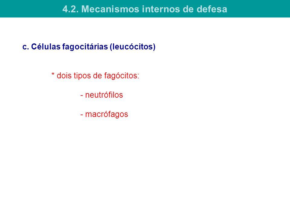 c. Células fagocitárias (leucócitos) * dois tipos de fagócitos: - neutrófilos - macrófagos 4.2. Mecanismos internos de defesa