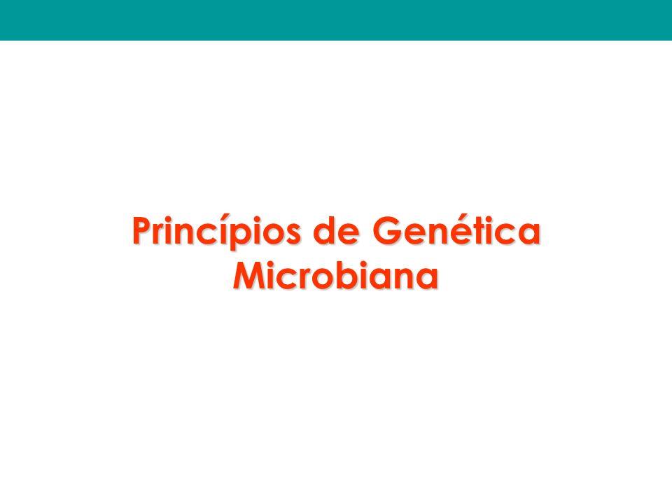 Princípios de Genética Microbiana