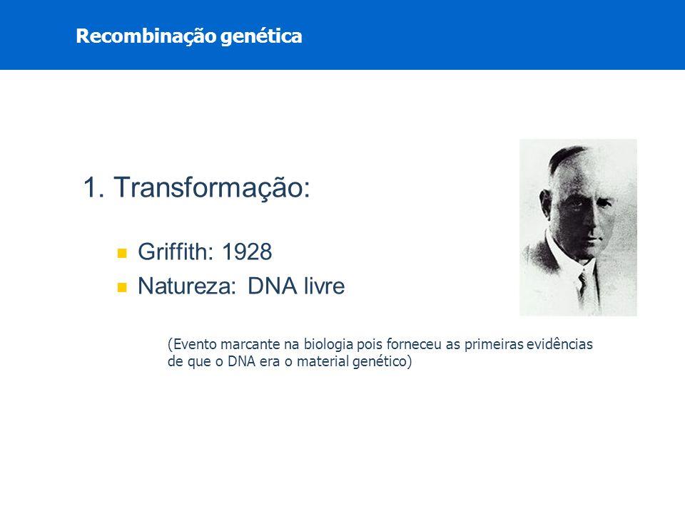 1. Transformação: Griffith: 1928 Natureza: DNA livre (Evento marcante na biologia pois forneceu as primeiras evidências de que o DNA era o material ge