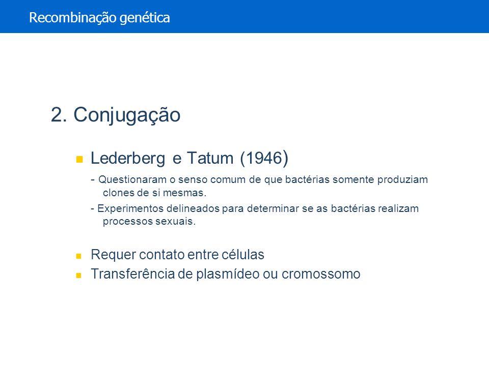 2. Conjugação Lederberg e Tatum (1946 ) - Questionaram o senso comum de que bactérias somente produziam clones de si mesmas. - Experimentos delineados