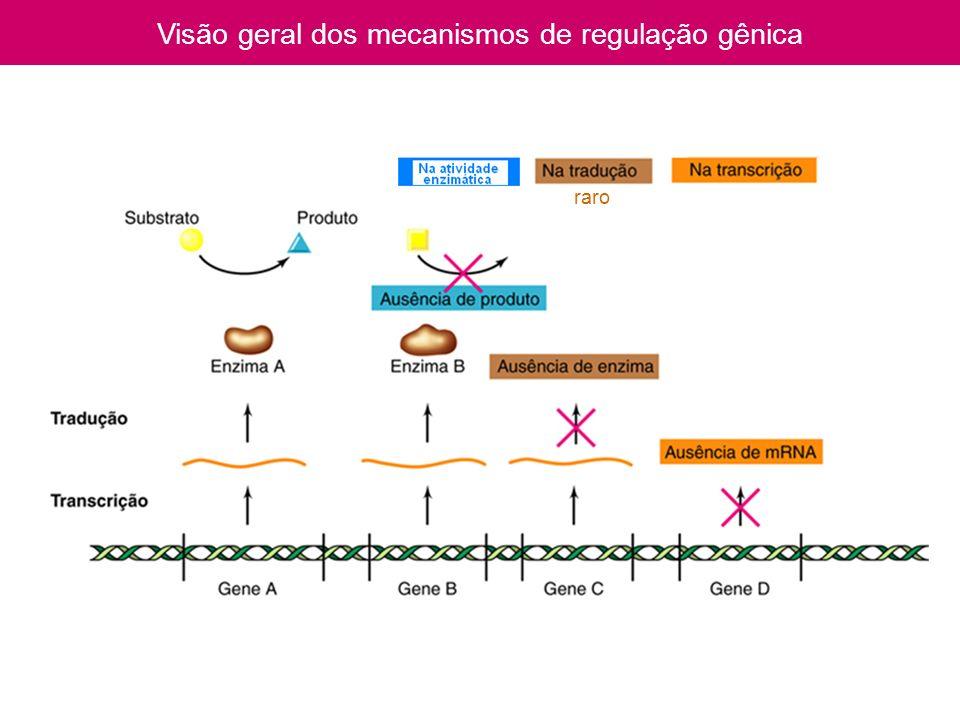 Visão geral dos mecanismos de regulação gênica raro
