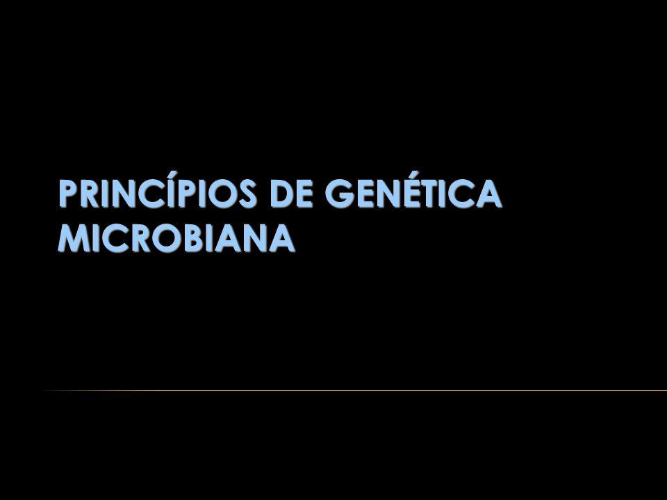 INTRODUÇÃO Estudo das semelhanças e diferenças entre os seres vivos: hereditariedade variabilidade