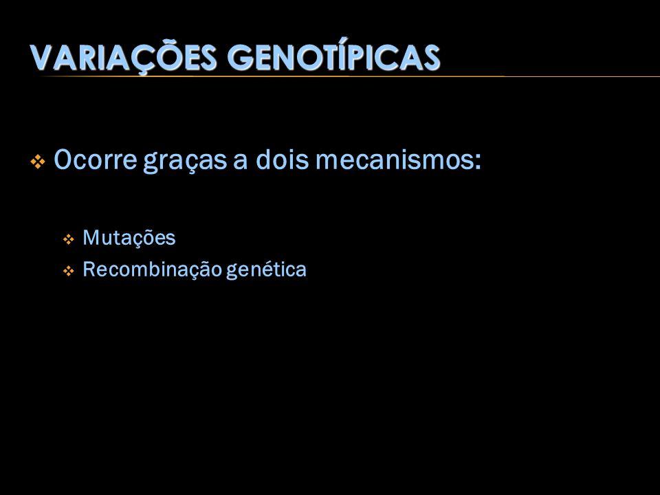 VARIAÇÕES GENOTÍPICAS Ocorre graças a dois mecanismos: Mutações Recombinação genética