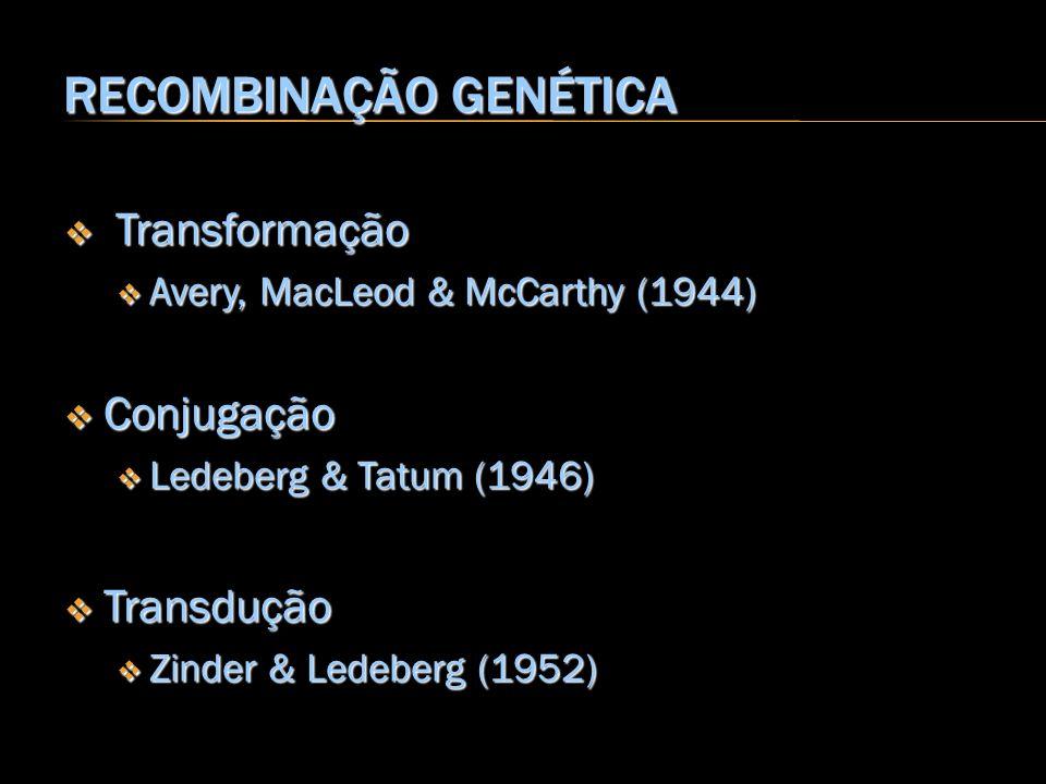 RECOMBINAÇÃO GENÉTICA Transformação Transformação Avery, MacLeod & McCarthy (1944) Avery, MacLeod & McCarthy (1944) Conjugação Conjugação Ledeberg & T
