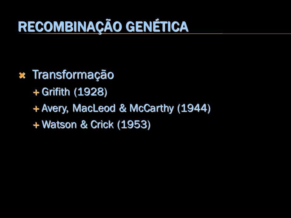 Transformação Transformação Grifith (1928) Grifith (1928) Avery, MacLeod & McCarthy (1944) Avery, MacLeod & McCarthy (1944) Watson & Crick (1953) Wats
