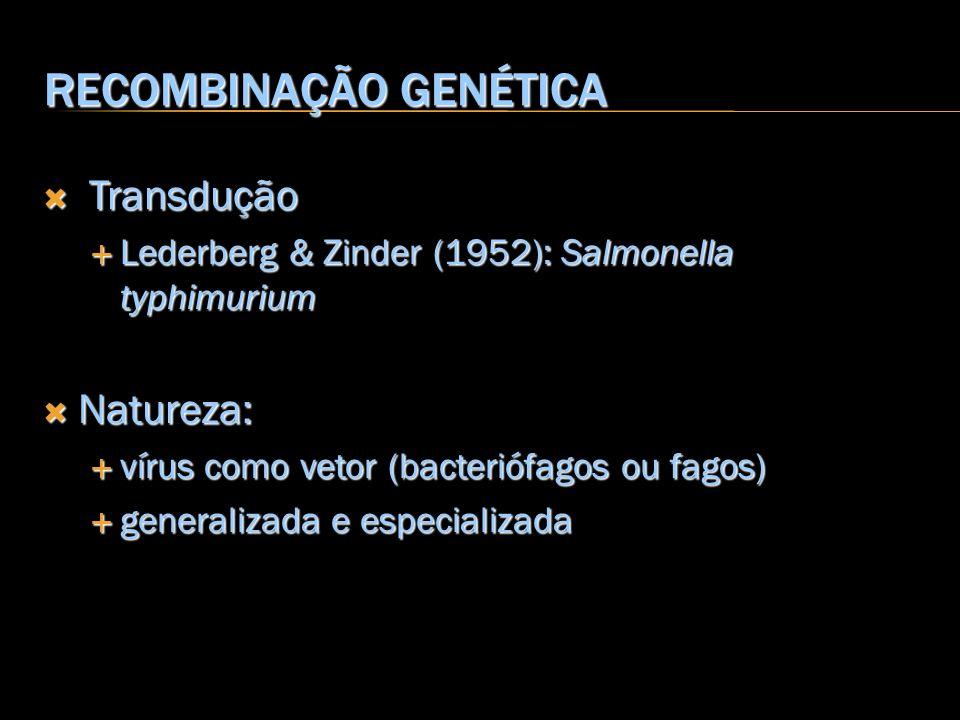 RECOMBINAÇÃO GENÉTICA Transdução Transdução Lederberg & Zinder (1952): Salmonella typhimurium Lederberg & Zinder (1952): Salmonella typhimurium Nature