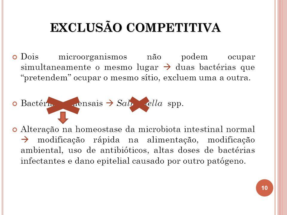 EXCLUSÃO COMPETITIVA Dois microorganismos não podem ocupar simultaneamente o mesmo lugar duas bactérias que pretendem ocupar o mesmo sítio, excluem um