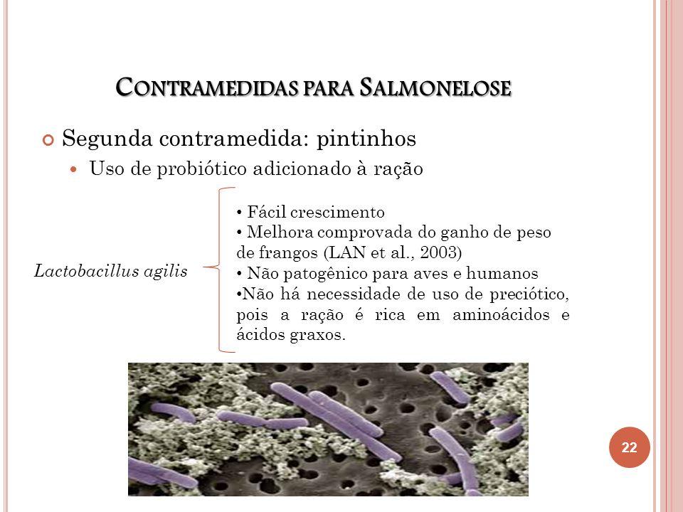 C ONTRAMEDIDAS PARA S ALMONELOSE Segunda contramedida: pintinhos Uso de probiótico adicionado à ração Lactobacillus agilis Fácil crescimento Melhora c