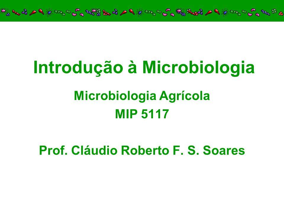 Introdução à Microbiologia Microbiologia Agrícola MIP 5117 Prof. Cláudio Roberto F. S. Soares